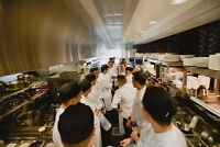 Line Cooks Needed | Multiple Locations