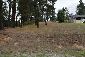 Lovely .41 acre parcel in Woodland Park
