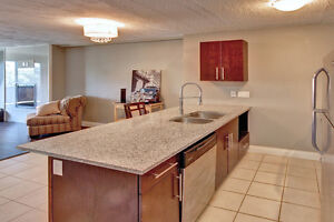 BRAND NEW REDESIGNED SUITES!!!! London Ontario image 3