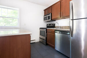 RENOVATED 1 BR WITH *DISHWASHER* STEPS FROM DAL, SMU AND IWK