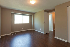 1 Bedroom Near Fanshawe College London Ontario image 4