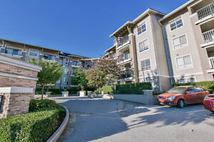 "Amazing ""Hawthorne"" Condo at Walnut Grove - 904 Sqft"