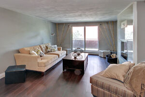 BRAND NEW REDESIGNED SUITES!!!! London Ontario image 8