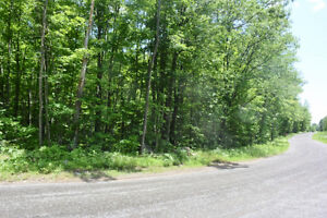 WATERFRONT LOT CROWE LAKE $229,900