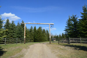 Beautiful, Private Horse Property, Millet, Wetaskiwin County