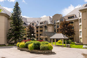 Beautiful 1 bed, 1 bath, 585sqft Condo at the Marquise, Whistler