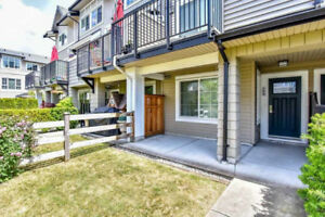 south surrey whiterock townhouse for rent (White Rock)