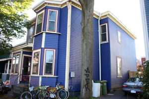 May 1st, three bed, North End, Commons, Wood stove, yard
