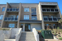 Stunning and bright, 2 bedroom condo steps from Westboro Village