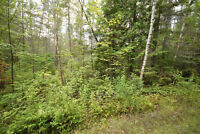 Haliburton Real Estate Team Vacant Land on Glamorgan Road