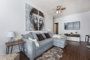 Stunning Fully Furnished 2-3 Bed 2 Bath Downtown Condo!
