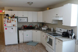 22 Columbia St $545/mo Kitchener / Waterloo Kitchener Area image 5