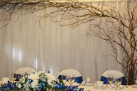 BEAUTIFUL CELEBRATIONS - Events Decor, Rentals & Catering (New)