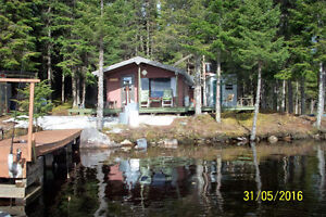 Chalet Rustique a vendre( chasse et pêche) Nouveau prix Lac-Saint-Jean Saguenay-Lac-Saint-Jean image 5
