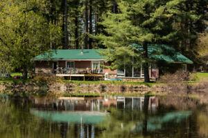 maison au bord de leau dans le bois