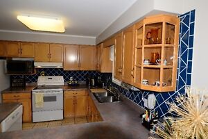 Kitchen Cabinets-Complete Set, Bleached Maple, Very Good Cond. Kitchener / Waterloo Kitchener Area image 5