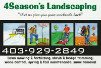 Professional yard care, Lawn mowing, Shrubs and Hedge trimming