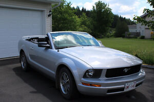 Stunning 2005 Ford Mustang Convertible
