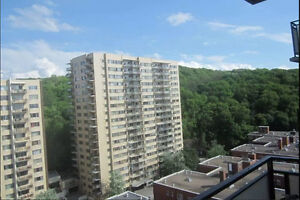 Luminous/Luxury Furnished/Spacious and close to downtown 2BR App