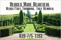 Hedges Made Beautiful