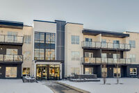 Brand New Condo - Fully Furnished in Midnapore
