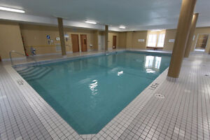 1 Bedroom in 2 Bedroom Apartment Downtown (Feb 1) London Ontario image 6