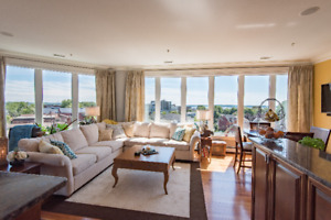 Opulent 1800 sq ft 2 bedroom penthouse with panoramic views