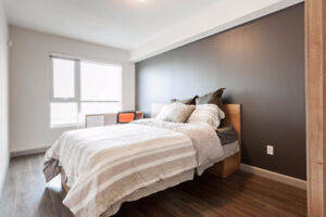 Looking for a student to take over lease for Fergus House