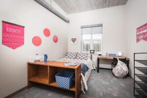 Downtown Apartment for Female Student (May 1 - Aug 30)