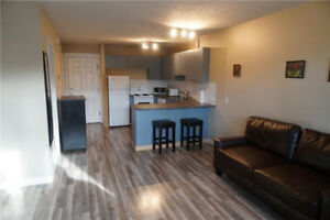 Renovated bachelors suite in the desirable Cathedral area!