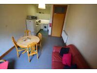 4 Bedroom Flat - Partick, Thornwood Drive