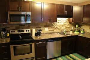 Renovated 2 Bedroom Condo in Lakeview