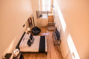 Plateau Beautiful Spacious Loft - Near Metro, Restaurants, Parks