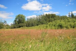 20 Acres To Build Your Dream Home Near Birds Hill Park