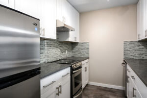 1 bedroom 1 bath den/ storage fully renovated unit for Sale!