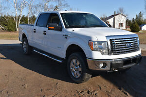 2011 Ford F-150 SuperCrew 4x4 eco boost Pickup Truck