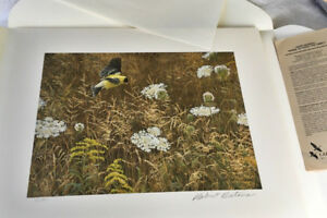Robert Bateman Queen Anne's Lace and American Goldfinch s/n