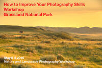 Expert Workshops Make You an Awesome Photographer
