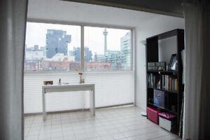 Toronto Condo for Rent. 2 Bedrooms