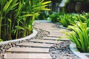 Garden & Landscaping Maintenance Alexandra Headland Maroochydore Area Preview