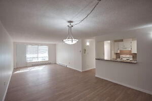 Absolutely Beautiful- 2 Bdrm Condo- 5 Appliance- complete reno St. John's Newfoundland image 10