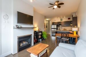 BRIGHT 1 BEDROOM WITH PANO VIEWS FROM ROOFTOP PATIO!