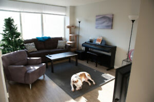 Looking for roommate in great 2 bedroom apartment Jan 1