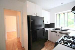 Large 1 bedroom | Balcony-Heating + Hot Water Included-Downtown