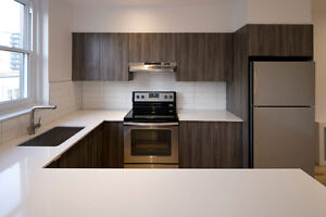 NEW HIGH-END CONDO SS APPL A/C QUARTZ DOWNTOWN, HEATING INCL