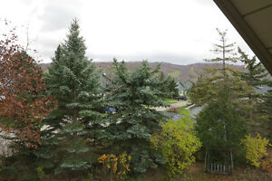 Blue Mountain chalet, views of the slopes, short walk to village