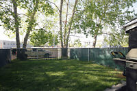 Townhome with a yard!! Aspen Park