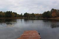 WATERFRONT LAND ON MACLEAN LAKE!