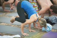 SPECIAL SUMMER SAVINGS - PRIVATE OR SEMI-PRIVATE YOGA CLASSES!