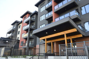 BEAUTIFUL 1 BEDROOM AVAILABLE NOW! CALL FOR YOUR 1st MONTH FREE!